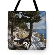 Suspended In Air Tote Bag