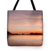Sutro Baths Tote Bag