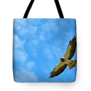 Swainson's Hawk Snake River Birds Of Prey Natural Conservation Area Tote Bag