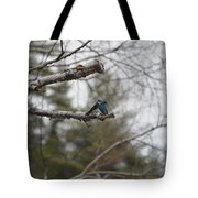 Swallow Discussion Tote Bag