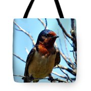 Swallow Glance Tote Bag