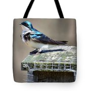 Swallow In The Wind Tote Bag