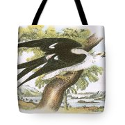 Swallow-tailed Kite Tote Bag