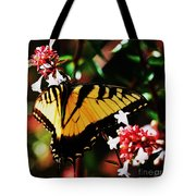Swallowback Butterfly # 1 Tote Bag