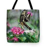 Swallowtail Butterfly 01 Tote Bag