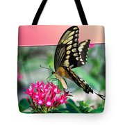 Swallowtail Butterfly 04 Tote Bag