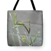 Swallowtail Feast Tote Bag