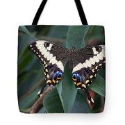 Swallowtail Tote Bag