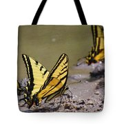 Swallowtails Tote Bag