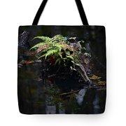Swamp Fern Tote Bag