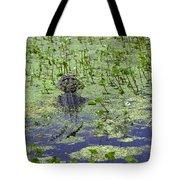 Swamp Gator Tote Bag