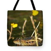 Swamp Muscian Tote Bag