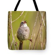 Swamp Sparrow Split Decision Tote Bag