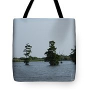 Swamp Tall Cypress Trees  Tote Bag