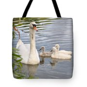 Swan And Chicks Tote Bag