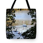 Swan And Ducks Through Trees Tote Bag