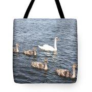 Swan And His Ducklings Tote Bag