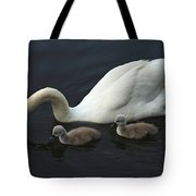 Swan And Signets Tote Bag