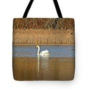 Swan And Swallow Tote Bag