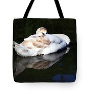 Swan Asleep Tote Bag