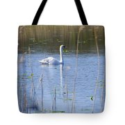 Swan At Derryallen Lough Tote Bag