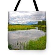 Swan Lake In Grand Teton National Park-wyoming  Tote Bag