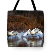 Swan Lake Tote Bag by Mike  Dawson