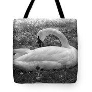 Swan Nap Tote Bag