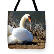 Swan Protects Her Eggs Tote Bag