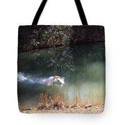 Swan Skid Tote Bag