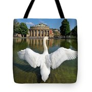 Swan Spreads Wings In Front Of State Theatre Stuttgart Germany Tote Bag by Matthias Hauser