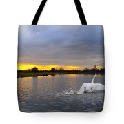 Swan Taking Off Tote Bag