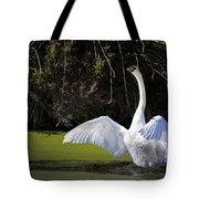 Swan Wings Spread Tote Bag