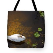 Swan With Sun Reflection On Water. Tote Bag