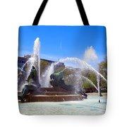 Swann Fountain Tote Bag