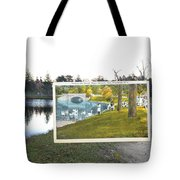Swans At Roger Williams Park In Providence Rhode Island Tote Bag
