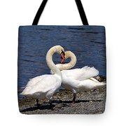 Swans Courting Tote Bag