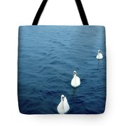 Swans On The Vltava River, Prague Tote Bag