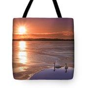 Swans Sunrise Tote Bag