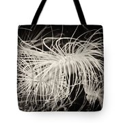 Swaying Anemone Bw Tote Bag