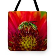 Sweat Bee Collecting Pollen Tote Bag