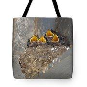 Sweet Adeline My Adeline Tote Bag by Robert Frederick