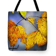 Sweet Autumn Tote Bag