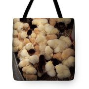 Sweet Baby Chicks For Sale Tote Bag