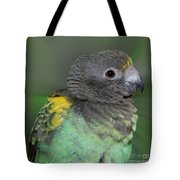 Sweet Baby Meyers Parrot Tote Bag