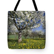 Sweet Cherry Orchard In Full Bloom Tote Bag