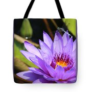 Sweet Dragonfly On Purple Water Lily Tote Bag