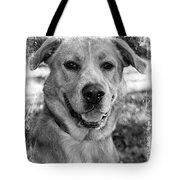 Sweet Hound Tote Bag