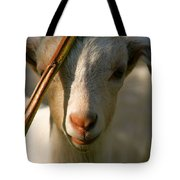 Sweet Kid Tote Bag