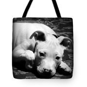 Sweet Moment Tote Bag